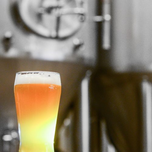 Beer Industry Production Survey